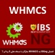 ماژول پیشرفته اتصال IBSng به WHMCS